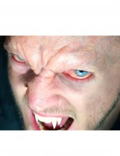 Halloween vampier voorhoofd - Premium