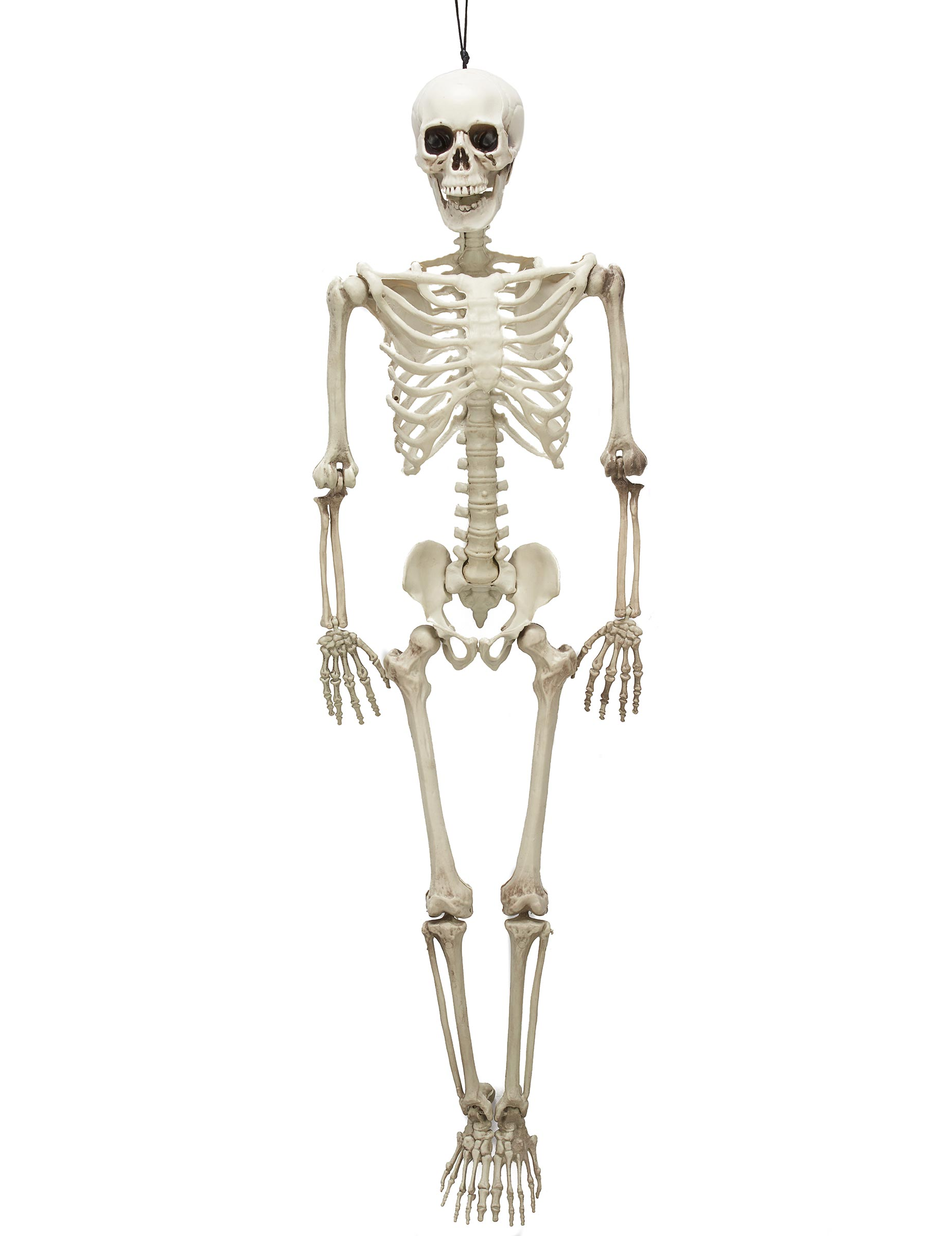 Skeletten decoratie voor halloween decoratie en goedkope carnavalskleding vegaoo - Type decoratie ...