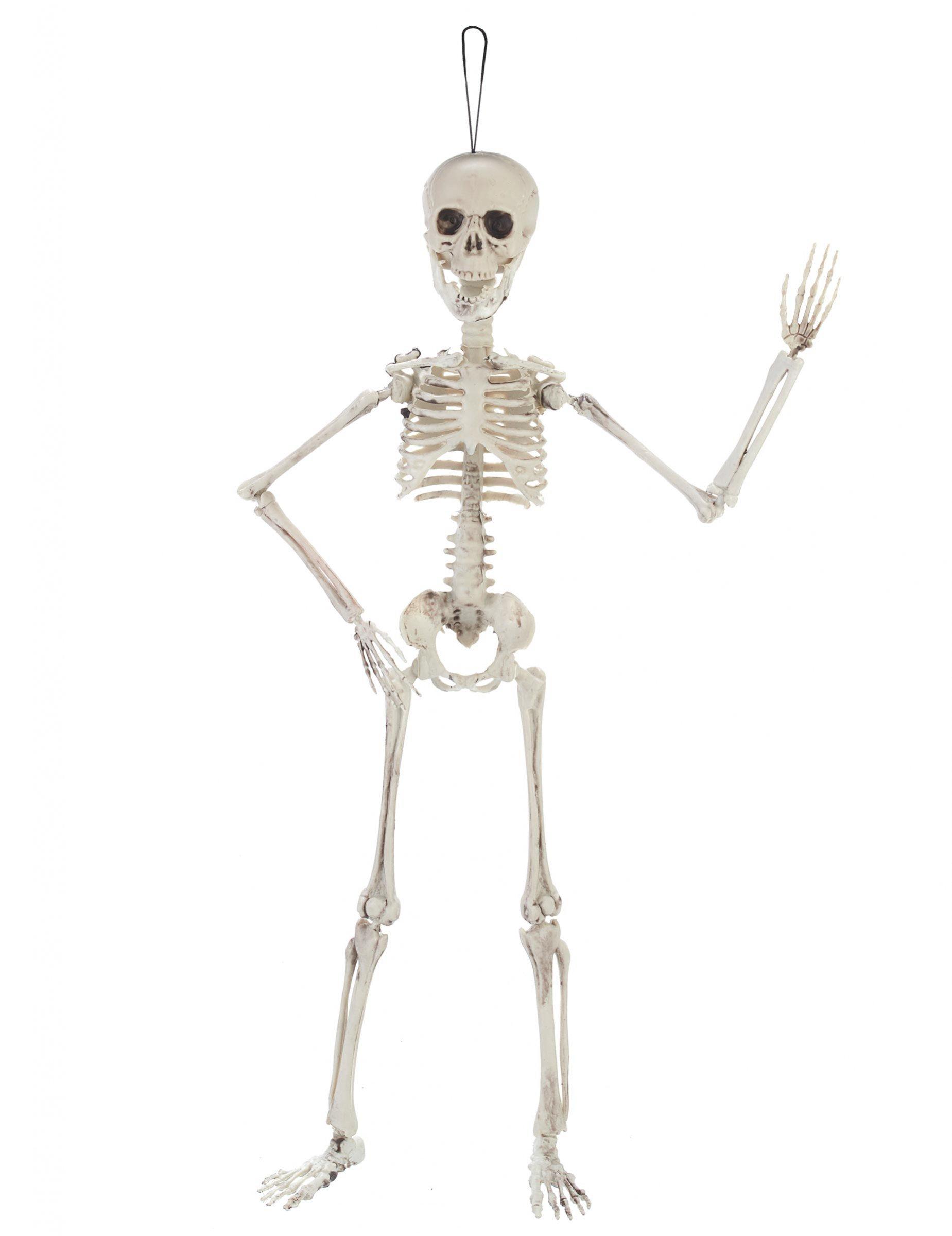 Beweegbaar skelet decoratie decoratie en goedkope for Goedkope decoratie
