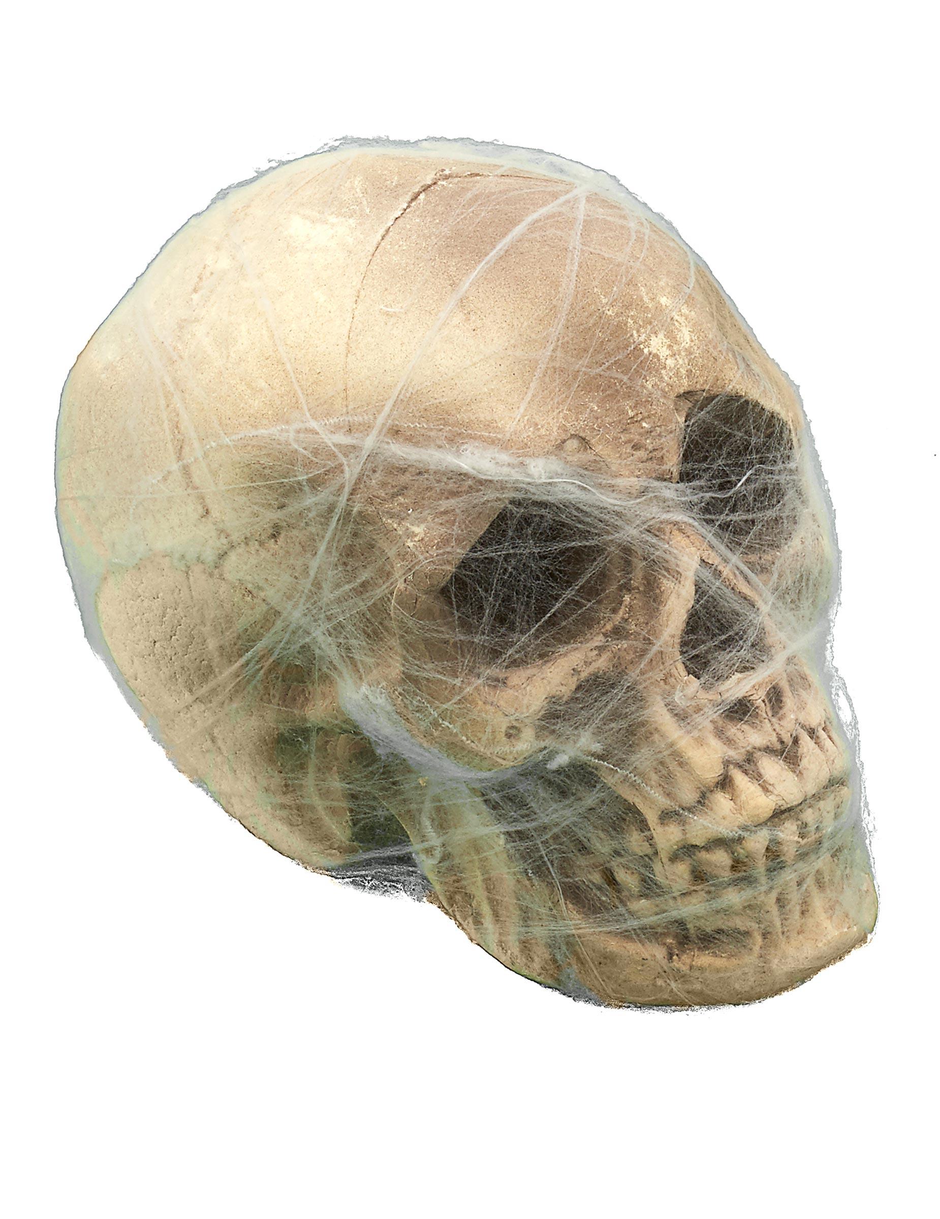 Schedel met spinnenweb decoratie decoratie en goedkope for Decoratie schedel