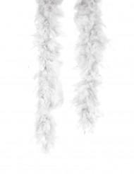 Witte boa 1.80m