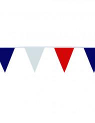 Nederlandse vlaggetjes slinger