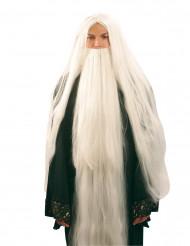 Tovenaarspruik en -baard voor mannen