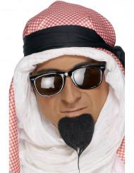Kleine sik van Arabische prins
