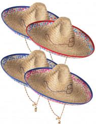 Mexicaanse strooien hoed voor volwassenen