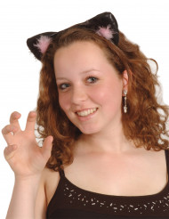 Zwart-roze kattenoren