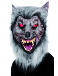 Weerwolfmasker voor volwassenen Halloween