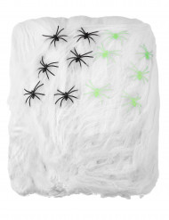 Spinnenweb voor Halloweenversiering