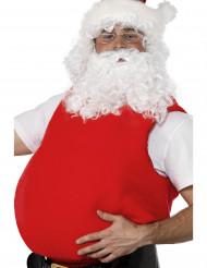 Kerstmanbuik