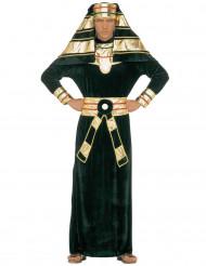 Groene en goudkleurige Egyptische farao outfit voor heren
