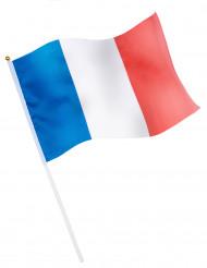 Vlag voor supporter Frankrijk