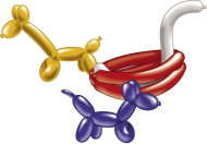 10 ballonnen om te plooien (met pomp)