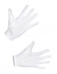 Standaard witte handschoenen voor volwassenen