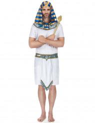 Egyptisch farao kostuum voor heren
