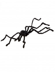 Grote behaarde halloween spin
