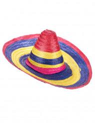 Multikleuren sombrero