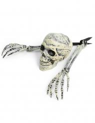 Skelet versiering Halloween decoratie