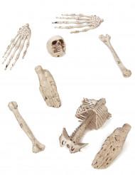Zak met botten Halloween versiering