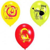 6 safari ballonnen