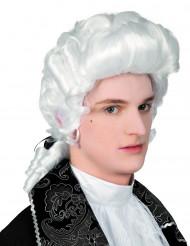 Barokke pruik voor mannen