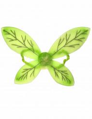 Groene vleugels voor kinderen