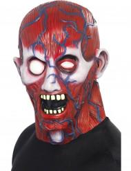 Volledig anatomiemasker voor volwassenen Halloween