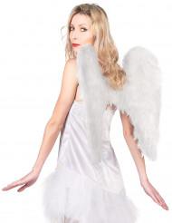 Witte vleugels voor volwassenen