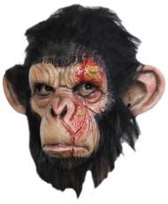 Masker van een aap met een ontstoken kop voor volwassenen (Halloween)