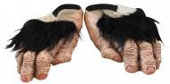 Chimpanseevoeten voor volwassenen