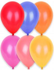 Set van 24 ballonnen