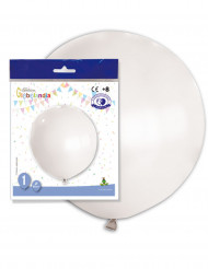 Reusachtige witte ballon