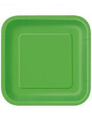 14 vierkanten kartonnen borden groen