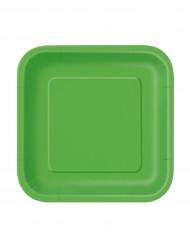 16 kleine groen bordjes