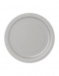 20 kleine zilverkleurige kartonnen borden