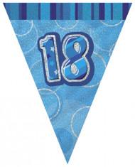 Blauwe vlaggenslinger 18 jaar