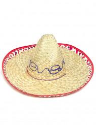 Volwassen sombrero