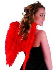 Rode vleugels voor volwassenen