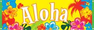 Slinger Aloha Hawaï