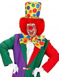 Hoge clownshoed voor volwassenen