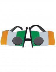 Bril van de Ierse vlag