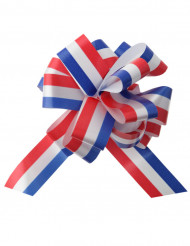 5 broches Nederlandse vlag