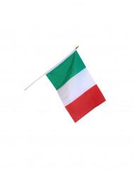 Italiaanse vlag 30 x 45 cm