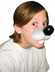 Muizen neus