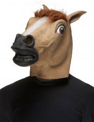 Paarden masker voor volwassen