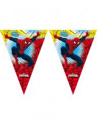 Vlaggenlijn van Spiderman™