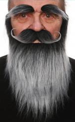 Grijze baard, snor en wenkbrauwen
