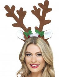 Rendier kerst haarband