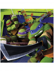 Set van Ninja Turtles™ servetten