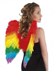 Veelkleurige vleugels voor volwassenen
