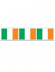 Slinger met Ierse vlag voor St Patrick